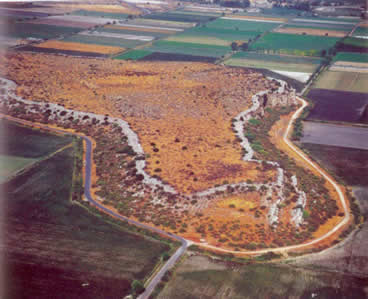 the site from the air