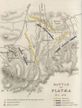 click to see larger battle of platea map